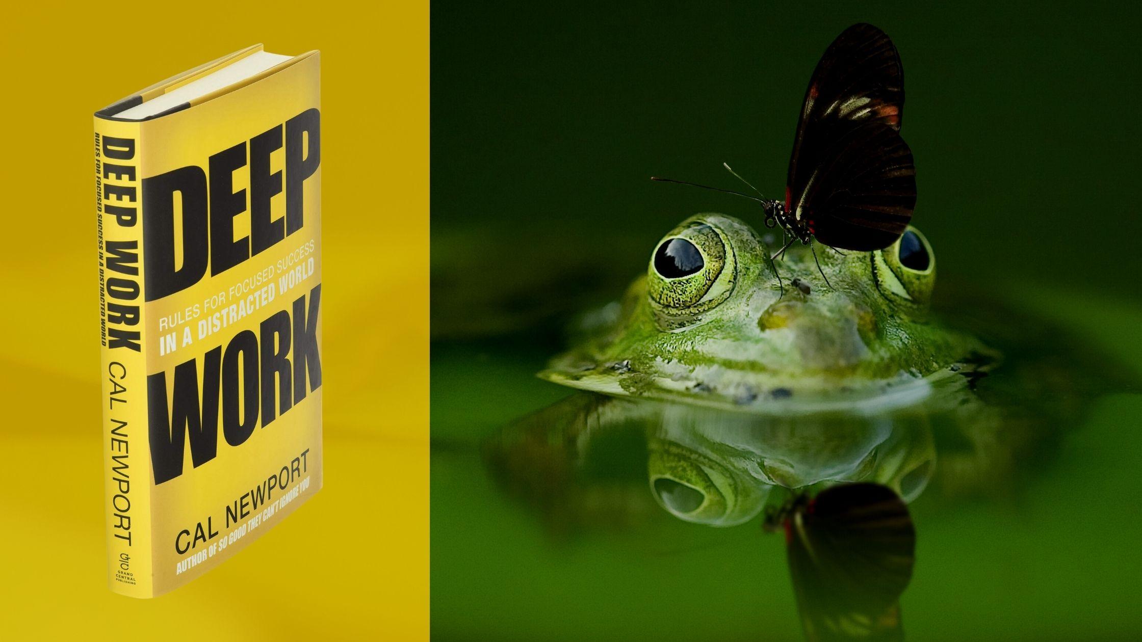 deep work book review